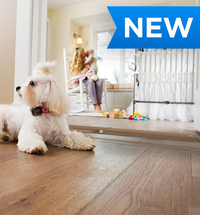 Invisible Fence Brand Indoor Solutions For Dogs And Cats The Invisible Fence Brand