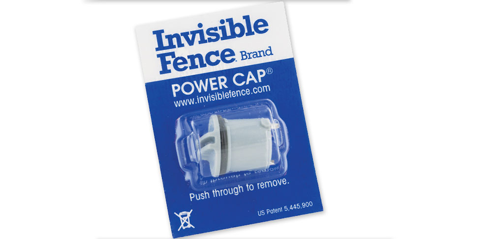 the invisible fence brand official website the invisible fence brand