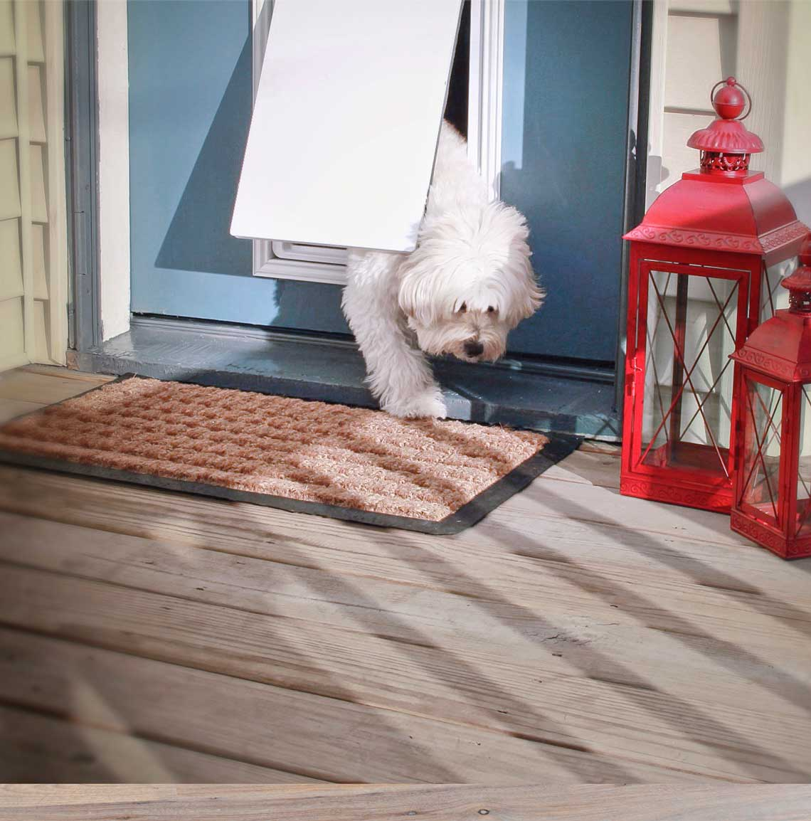 Electronic Dog Door The Invisible Fence Brand
