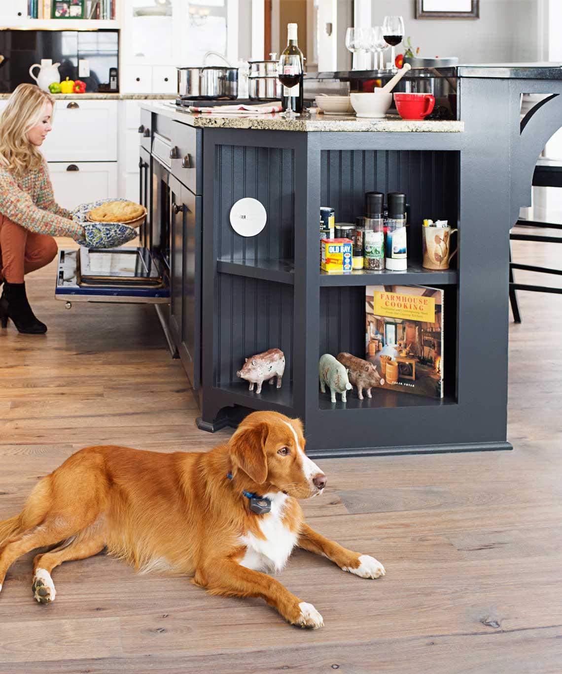 Indoor Shields® Plus Solution.