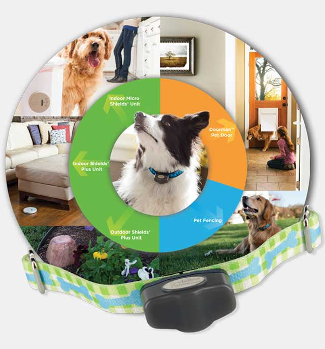 Complete Home Pet Care