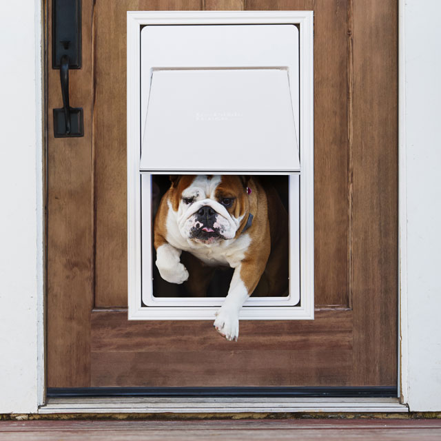 Doorman™ Pet Door - Professionally Installed