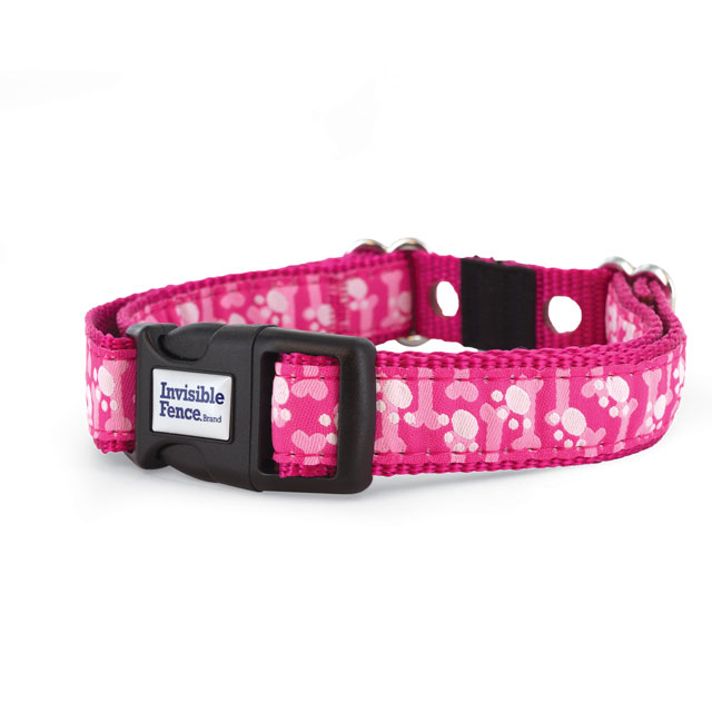 Invisible Fence® Brand Paws on Pink Collar